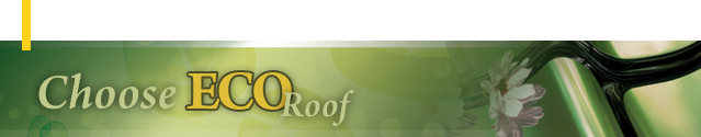 Choose Eco Roof